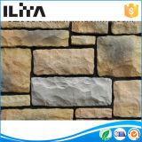 Mattonelle esterne del mattone della pietra dell'ardesia dell'impiallacciatura per il rivestimento della parete (YLD-71043-1)