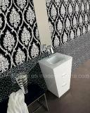 Armário de banheiro do PVC de Greeen do projeto simples