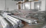 TP304, TP304L, Tp316/Tp316L, tubo sanitario inconsútil del acero inoxidable Tp321