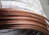 Fio de terra de aço folheado da costa do cobre elevado da condutibilidade