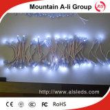 534 Long-Life 백색 색깔 LED 기공 램프 끈