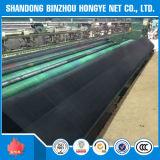 Réseau de sécurité dans la construction de HDPE des pointeaux 100g du noir 7 de qualité