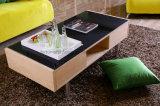 Table basse en bois moderne avec les pieds de dessus et d'acier en verre Tempered (AD-FY-N501-CJ)