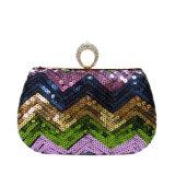 L'usager coloré du type le plus neuf met en sac le sac de soirée perlé de femmes élégants