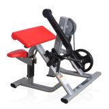 La máquina/la placa comerciales del enrollamiento del bíceps de la gimnasia cargó el enrollamiento del bíceps de la gimnasia
