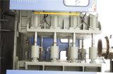Der Schlag, der Maschinen für Differents formt, sortiert Flaschen