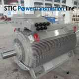 Motore elettrico di grande potenza della struttura compatta di serie Y2