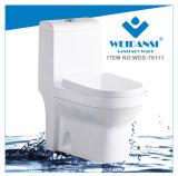 Weidansi Céramique Wash Down S-Trap One Piece Toilet (WDS-T6111)