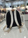 5 couleurs imperméabilisent les cartables M (A080-1) de loisirs de sacs à dos lavés par qualité de papier d'emballage