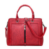 Heißes Sale Frosted Handbags Leather Bags für Ladys (BL899)