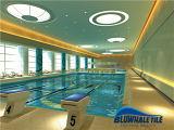 Diseño de cristal de la piscina del mosaico de la porcelana italiana del diseño (BGE013)