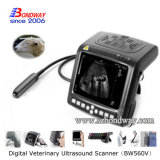 Scanner veterinario portatile 4D Doppler di ultrasuono