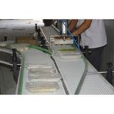 Nahrungsmittel-und Getränkemodularer Plastikbandförderer
