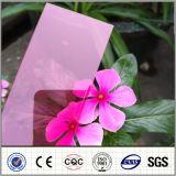 Feuille en plastique de PC de Foshan de feuille solide claire de polycarbonate pour la toiture