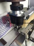 Taglio laterale di CNC del professionista di legno della mobilia doppio e perforatrice (TC-828):