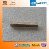 Neodym-Block-Magnet der Qualitäts-N50m