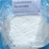 99% 순수성 크리스탈 스테로이드 호르몬 분말 테스토스테론 Decanoate CAS: 5721-91-5