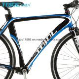 스포츠 자전거 또는 도로 자전거를 경주하는 도로 자전거 또는 남자
