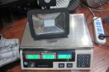 옥외 운동 측정기 방수 IP65 50W LED 투광램프