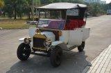 Rariro耐久5kw旧式なモデルTクーペの電気ツーリスト車