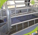 De gegalvaniseerde het Werpen van Varkens LandbouwApparatuur van Kratten voor Varken