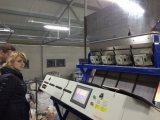 カラーソート機械をリサイクルしている高容量のプラスチックペット