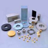 Vari magneti di NdFeB di figure per il motore senza spazzola di CC del servomotore/motore lineare/motore passo a passo
