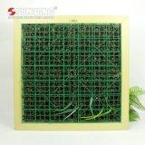 Groene Muur van het Frame van het Decor van het Huis van de ontwerper de Binnen met Gebladerte