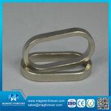 De permanente Magneet van de Motor van de Magneet van de Zeldzame aarde van de Magneet