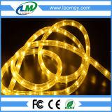 Des Fabrik-horizontale LED Seil-Beleuchtung des vollständigen Verkaufs-2 Draht-- Blau