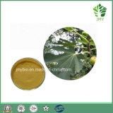 Выдержка листьев смоквы 10:1 5:1 флавонов изготовления естественная 10%