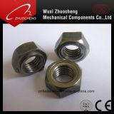 스테인리스 사각 또는 육 용접 견과 DIN928 DIN929