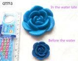Fabrik-Zubehör-wachsender Plastik blüht Wasser-wachsende Spielwaren-bunte wachsende Blumen