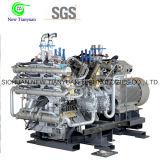 Hidrógeno/oxígeno/nitrógeno/compresor de gas del CO2 para la estación de servicio