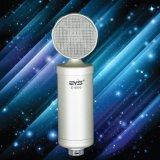 O sénior escora o condensador Mic do microfone