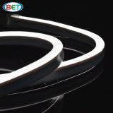 220V 120V 전압을%s 옥외 유백색 재킷 LED 네온은 작동한다