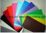 De kleurrijke Holle Raad 1000*2000 van pp- Bladen
