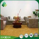 O sofá luxuoso da alta qualidade ajusta sofás secionais para a sala de visitas