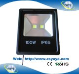 O tipo o mais novo luz do Sell superior de Yaye 18 do jardim do diodo emissor de luz das luzes 100W do túnel do diodo emissor de luz luz/100W da inundação do diodo emissor de luz da aprovaçã0 100W de Ce/RoHS