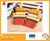 De Kleurrijke Warme Handschoenen van de winter