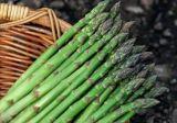 Extrato natural dos espargos da manufatura 100%