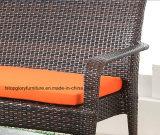 Rattan do PE & mobília do alumínio para o sofá ao ar livre (TG-1300)