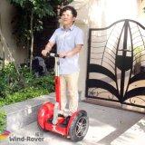 Vespa eléctrica del vehículo de la movilidad de la batería constante de Rechangeable
