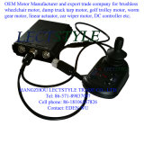 Мотор кресло-коляскы электричества DC 12.5 дюймов безщеточный или мотор эпицентра деятельности кресло-коляскы с Electro тормозом Magentic
