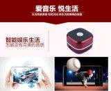 휴대용 음악 FM 라디오 USB TF 카드 구멍을%s 가진 소형 무선 Bluetooth 스피커