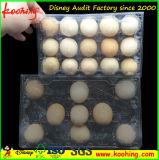 皿を包む明確な透過プラスチックペット10卵