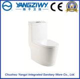 Siphonic protégeant la cuvette de toilette en céramique