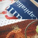Знамя ткани Eco профессионального знамени ткани полиэфира растворяющее