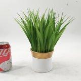 人工的なOniongrassの鉢植えなプラント装飾
