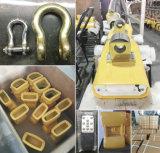 De draagbare Elektrische Schaal 3000kgs van de Kraan